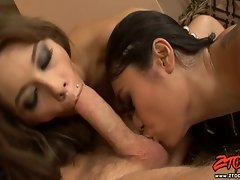 Pricilla Milan and hot friend enjoy blowing a big cock together