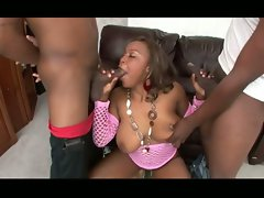 Double cock-blowing by busty ebony minx